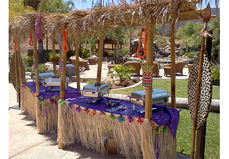 Palapa Covers
